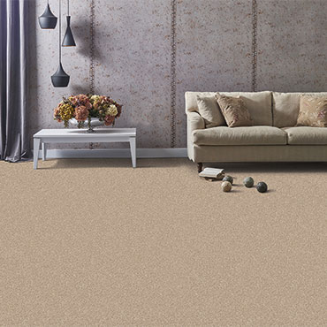 Phenix Textured Carpeting